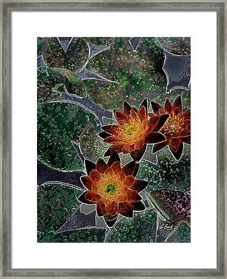 Impressionistic Lilies Framed Print by Gordon Beck