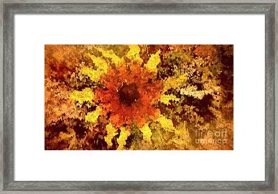 Impressionistic Petals Framed Print