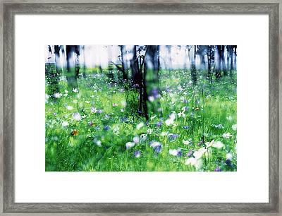 Impressionistic Photography At Meggido 1 Framed Print
