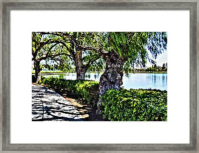 Impressions From A Park - Three Framed Print