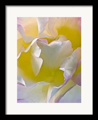 Flora Images Framed Prints
