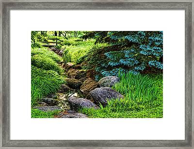 Impressions Of Gardens - A Miniature Creek Through The Fresh Spring Green Framed Print