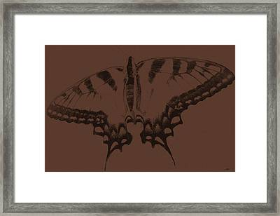 Imprints Of A Butterfly Framed Print by Debra     Vatalaro
