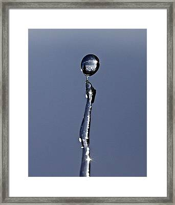In A Drip Framed Print by Robert Pearson