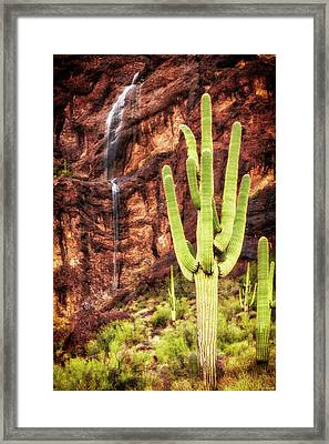 In A Dry And Thirsty Land Framed Print