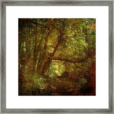 In A Forest Framed Print by Inesa Kayuta