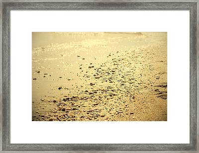 In A Golden Morning Framed Print by Andrea Mazzocchetti