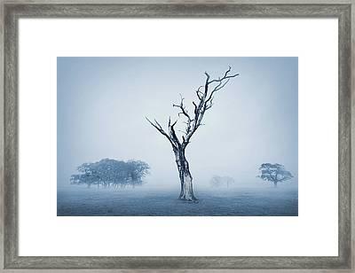 In A Mist Framed Print