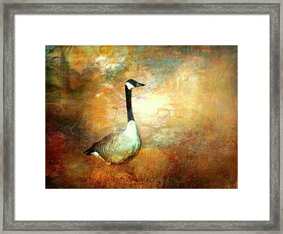 In A Quiet Place Framed Print