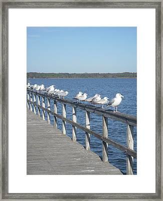 In A Row Framed Print by Warren Thompson