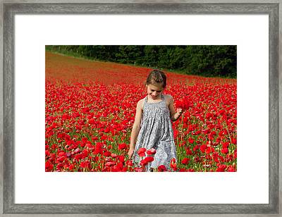 In A Sea Of Poppies Framed Print