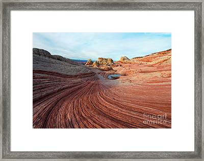 In A Sea Of Red Framed Print by Mike Dawson