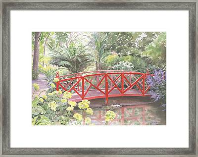 In Abbotsbury Subtropical Gardens. Framed Print by Maureen Carter