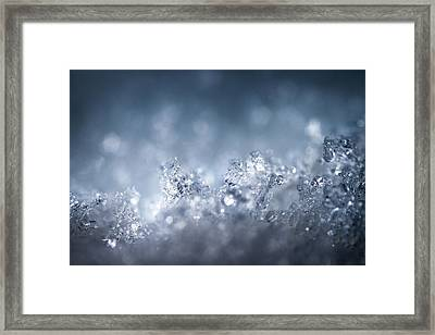 In An Icy World Framed Print