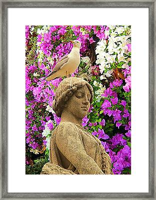 In Colors Stood With A Seagull On A Head Framed Print