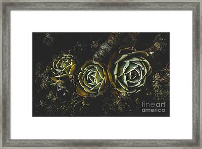 In Dark Bloom Framed Print