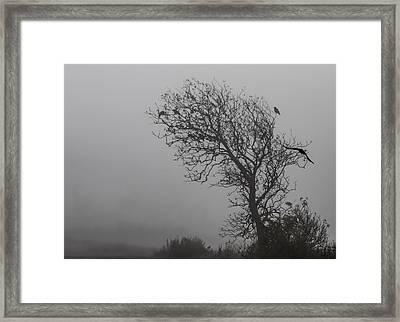 In Days Of Silence Framed Print by Odd Jeppesen