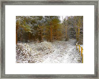 in December Framed Print by Svetlana Sewell