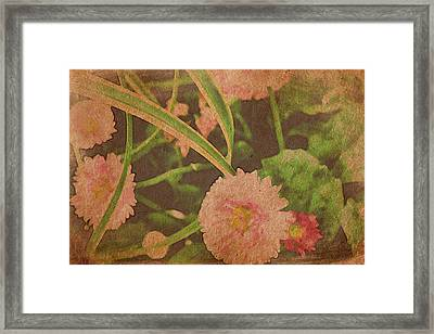 In Every Garden Framed Print by Bonnie Bruno