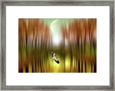 In Flight Framed Print by Jessica Jenney
