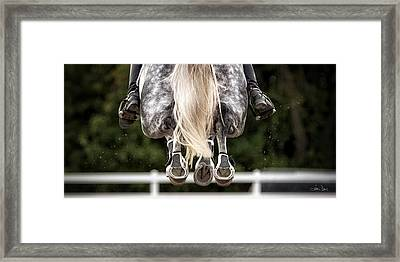 In Flight Framed Print by Joan Davis