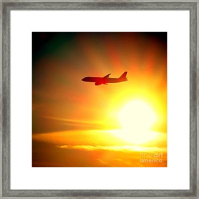 In Flight Framed Print by Olivier Le Queinec