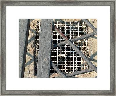 In Grates Framed Print by Jacob Stempky