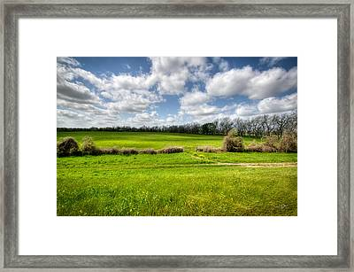 In Green Pastures Framed Print