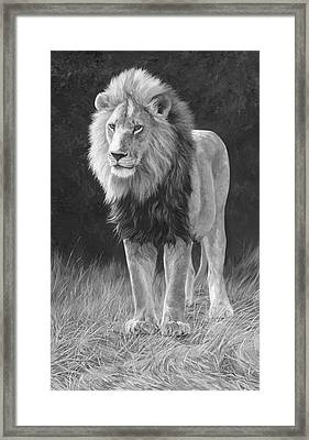 In His Prime - Black And White Framed Print