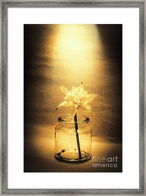 In Light Of Nostalgia Framed Print