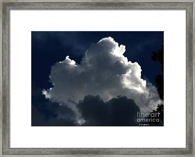In Light Of Things Framed Print by Greg Patzer