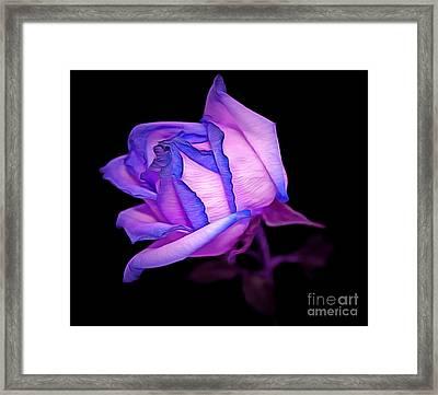 In Love Framed Print by Krissy Katsimbras