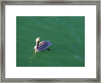 In Love With The Green Earth. Framed Print