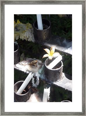 In Memory 3 Framed Print by Jez C Self