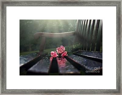 In Memory Framed Print by Svetlana Sewell
