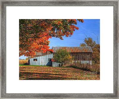 In Midst Of Change Framed Print by Robert Pearson