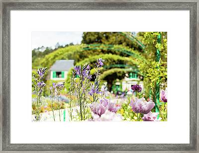 In Monet's Garden Framed Print
