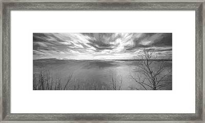 In Motion II Framed Print