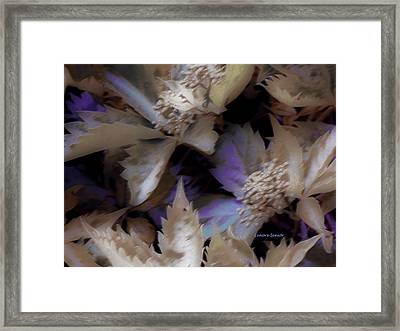 In My Backyard Framed Print