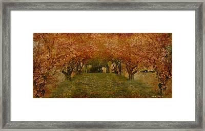 In My Garden Framed Print by Inesa Kayuta