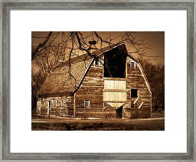 In Need Framed Print by Julie Hamilton