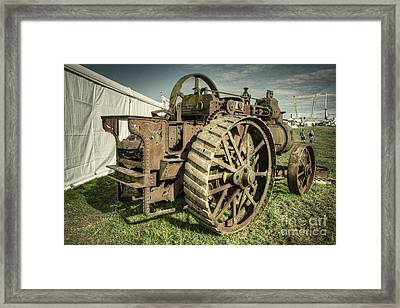 In Need Of Tlc  Framed Print
