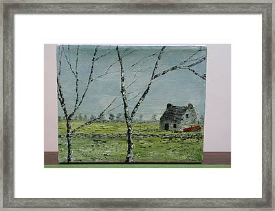 In Neglect Framed Print by Pauline Byrne