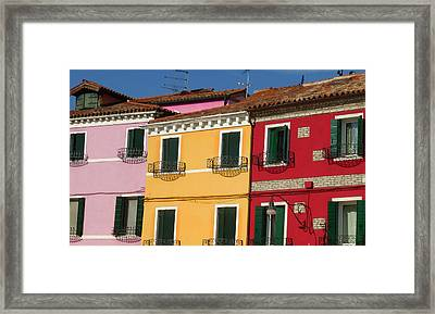 In Neighbourly Fashion  Framed Print
