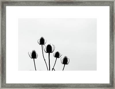 In Order Framed Print