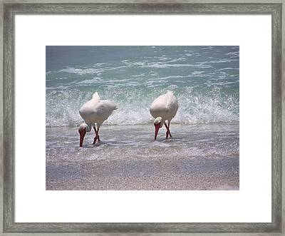 In Paired Framed Print by Amanda Vouglas