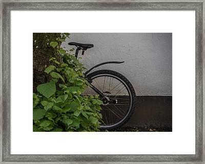 In Park Framed Print by Odd Jeppesen