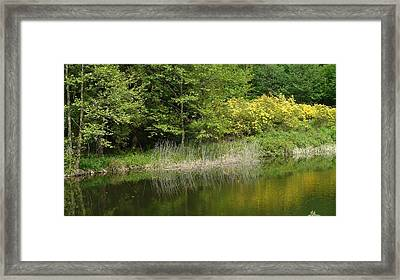 In Peace With Nature Framed Print by Attila Balazs