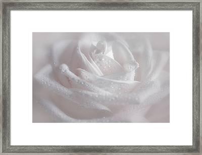 In Pink Tones Framed Print