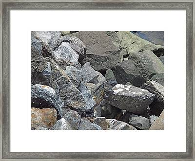 Framed Print featuring the photograph In Plain Sight by Kathy Kelly